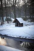 Winter beeld