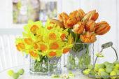 Voorjaarsbloemen in vaasjes