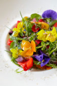 Herb-flowers salad