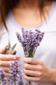 Dame met lavendel bloemen