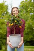 Lady holding citrus plant
