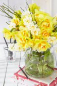 Narcissus bouquet