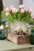 Tulipa Queensland bulb bouquet