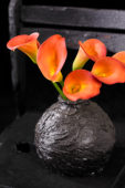 Zantedeschia in vase