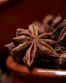 Illicium verum, star anise