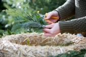 Make your own christmas wreath