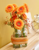 Gerberas on vases