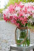 Nerine bouquet