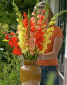 Woman arranging Gladiolus bouquet