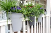 Hanging containers on balcony railing