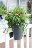 Hanging container on balcony railing