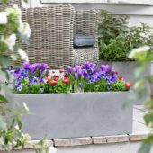 Spring container on terrace
