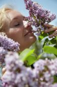 Woman smelling Syringa shrub