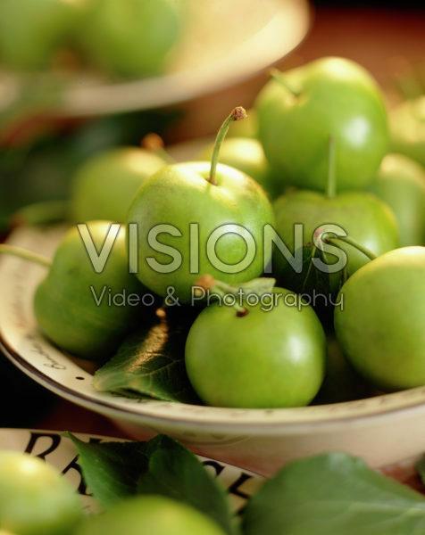 Prunus domestica Reine Claude Verte