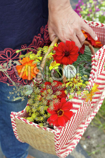 Picking summer flowers