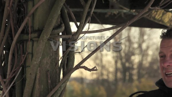 VIDEO Pruning Wisteria