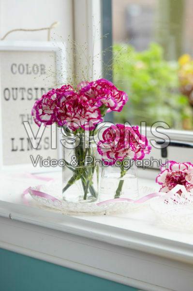 Dianthus on vase