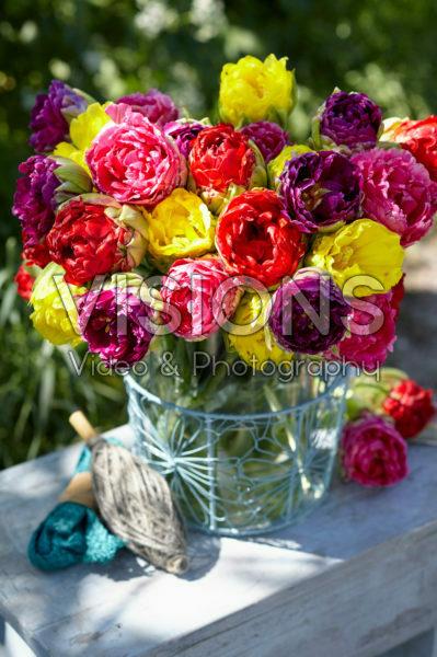 Tulipa Pop Up bouquet
