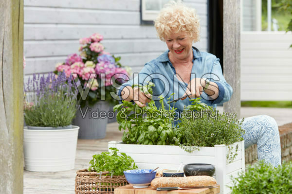 Lady cutting herbs