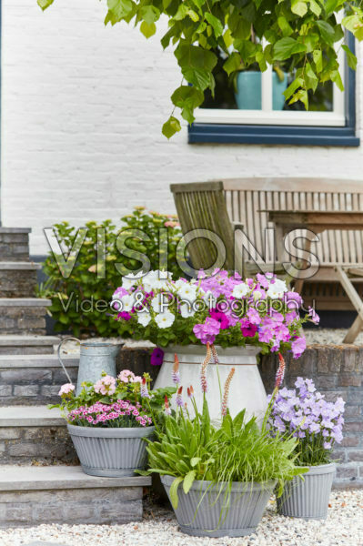 Summer containers