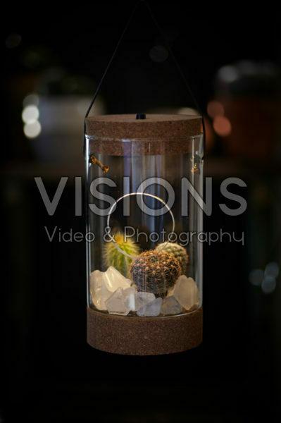 Cactus combinatie in glas
