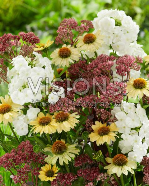 Perennial mix