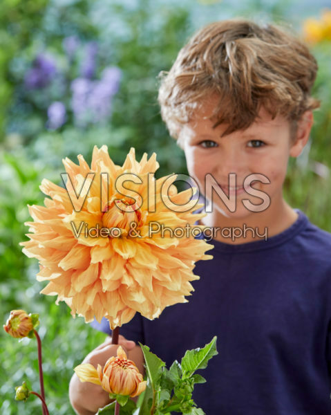 Boy with Dahlia Ben Huston flower