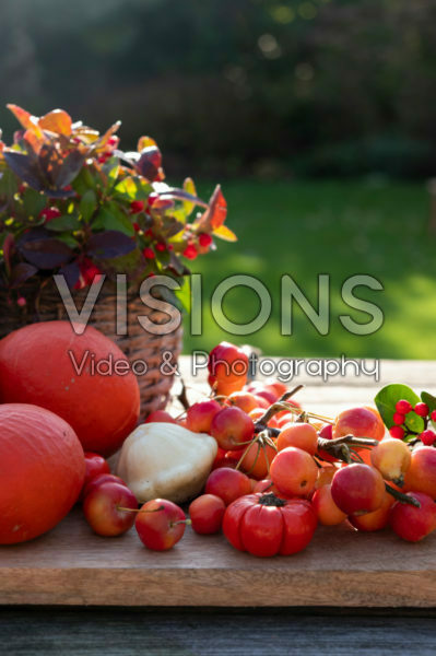 Ornamental fruit collection