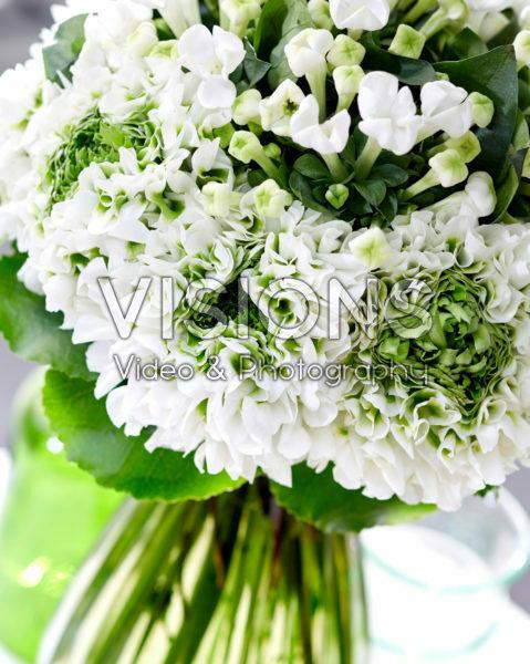 Bouvardia White Sensation, Ranunculus Pon Pon Iglo