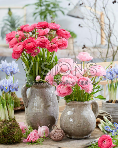 Ranunculus bouquets
