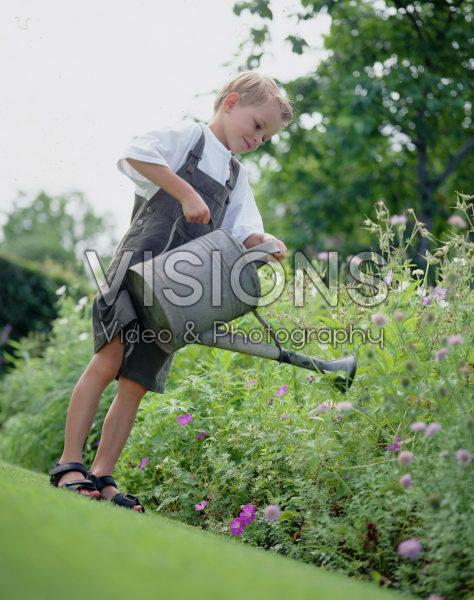 Boy watering geranium