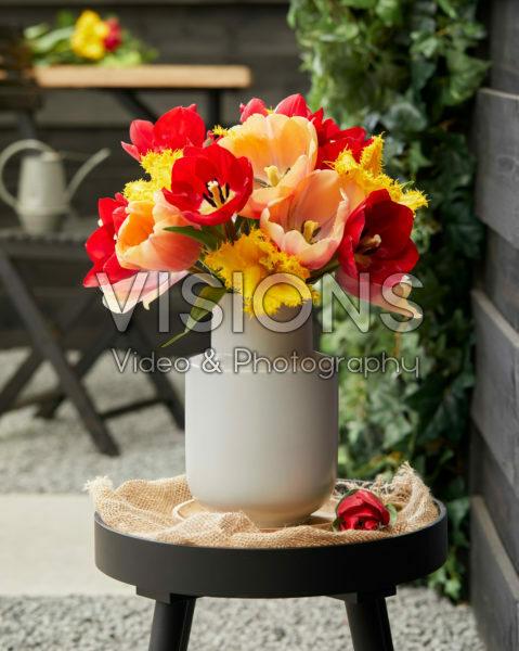 Tulip mix in vase