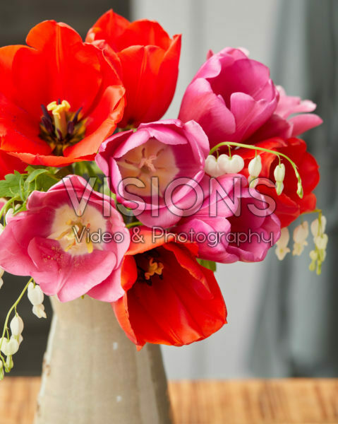 Tulip mix in vase