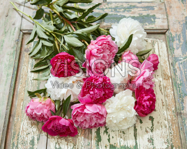 Paeonia mixed bouquet