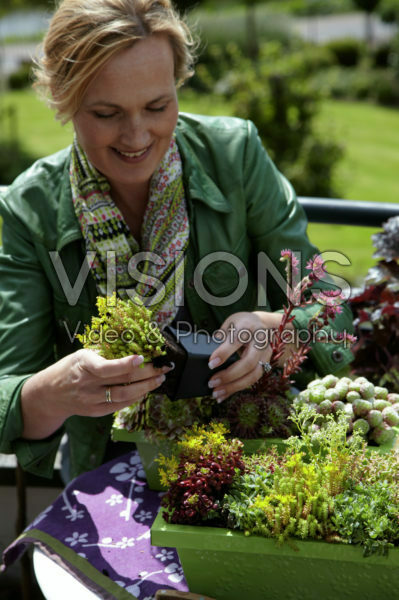 Woman planting succulents