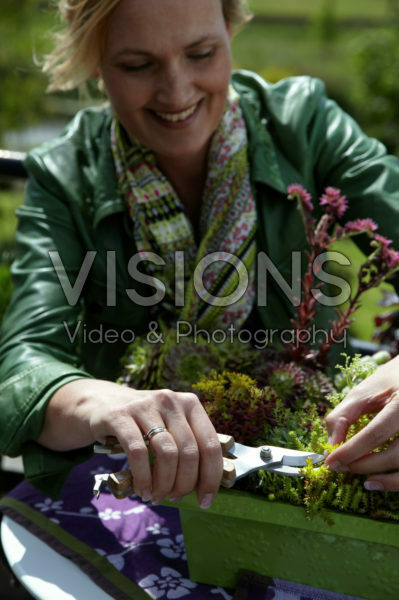 Woman trimming succulents