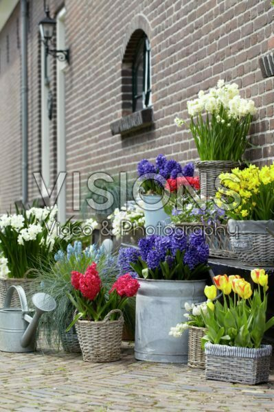 Spring containers